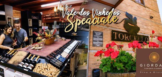 BENTO GONÇALVES: Visite Vinícolas Boutique Reconhecidas Nacionalmente no Tour Vale dos Vinhedos Speciale por SÓ R$99!!